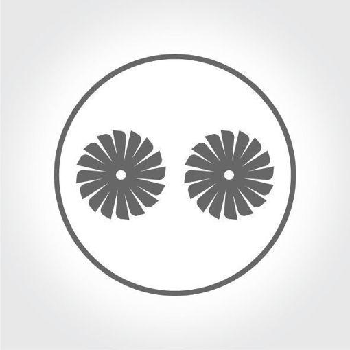 Çift Fan