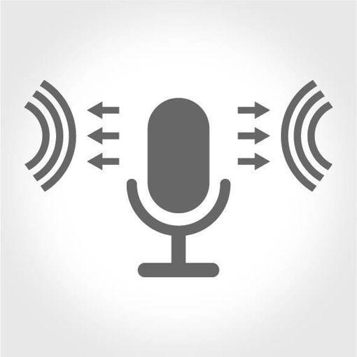 Mikrofon Özelliği
