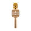 MF Product Acoustic 0254 Karaoke Mikrofon Gold resmi