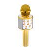 MF Product Acoustic 0255  Karaoke Mikrofon Gold resmi