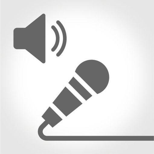 Hem Mikrofon Hem Hoparlör