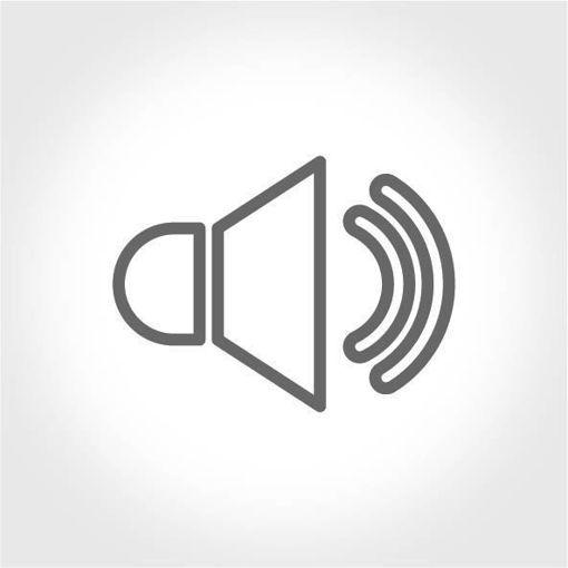 Kaliteli Ses Aktarımı