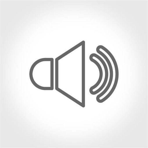 Oyun İçi Mükemmel Ses