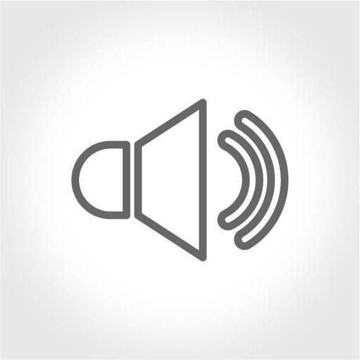 Kusursuz Ses İletimi