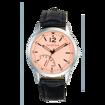 David Clark DC50105M-04 Kadın Kol Saati resmi